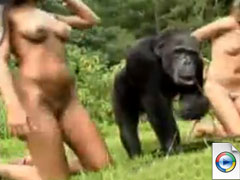 Sex with Monkey - extreme zoo porn